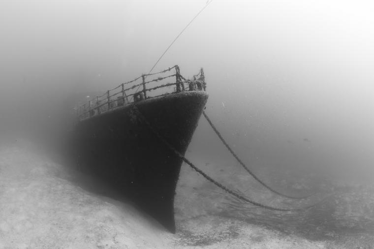 Bronsbilden från undervattens-VM är tagen på ett vrak utanför Madeiras kust där mästerskapet avgjordes i förra veckan.